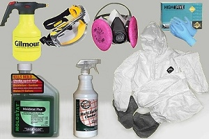 mold remediation kit