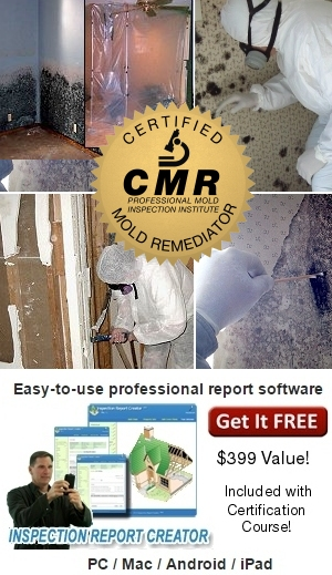 mold remediator course